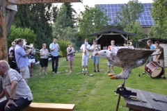 vogelbauen_2011_07